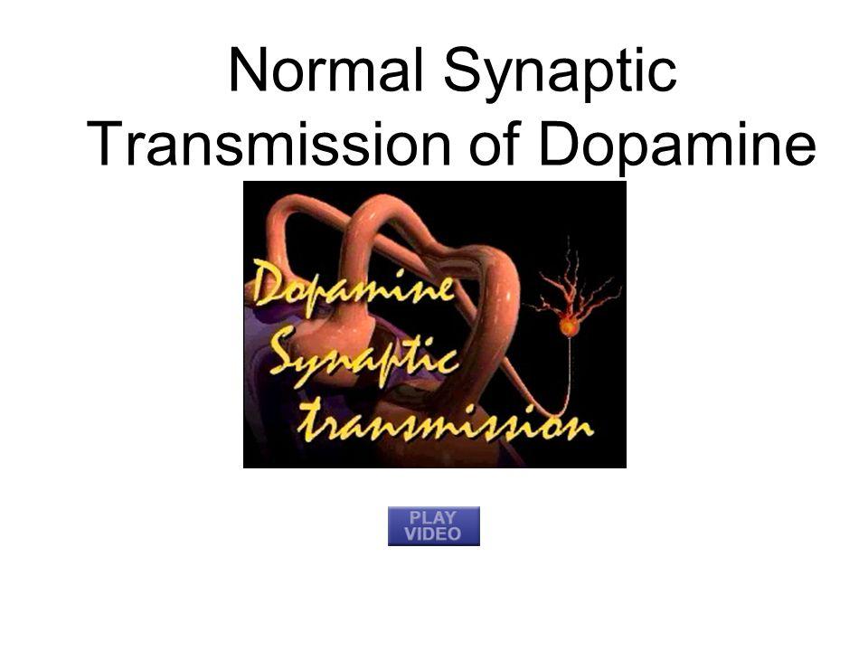 Normal Synaptic Transmission of Dopamine