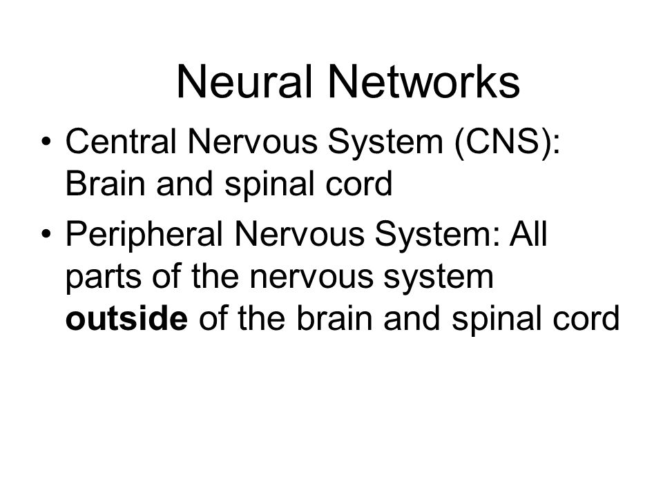 Neural Networks Central Nervous System (CNS): Brain and spinal cord