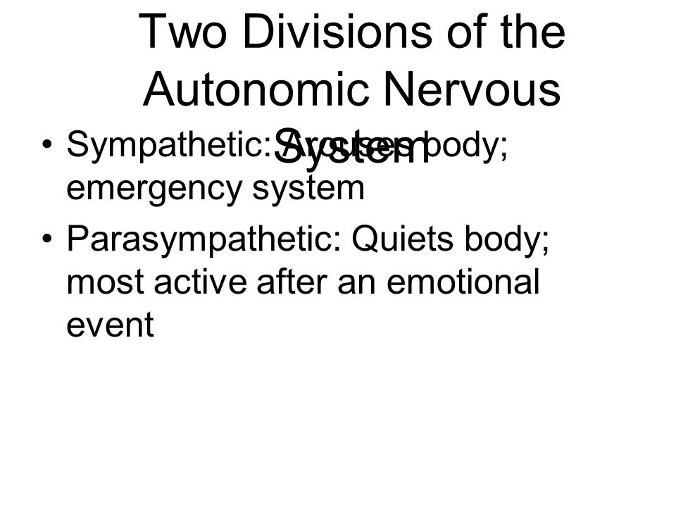 Two Divisions of the Autonomic Nervous System