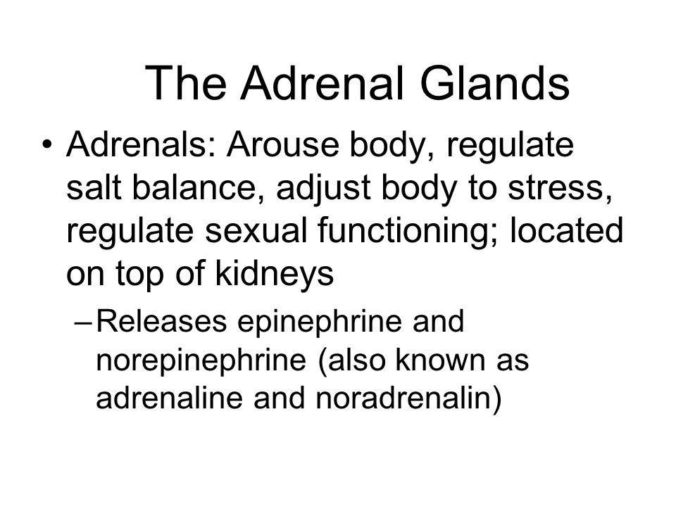 The Adrenal Glands Adrenals: Arouse body, regulate salt balance, adjust body to stress, regulate sexual functioning; located on top of kidneys.