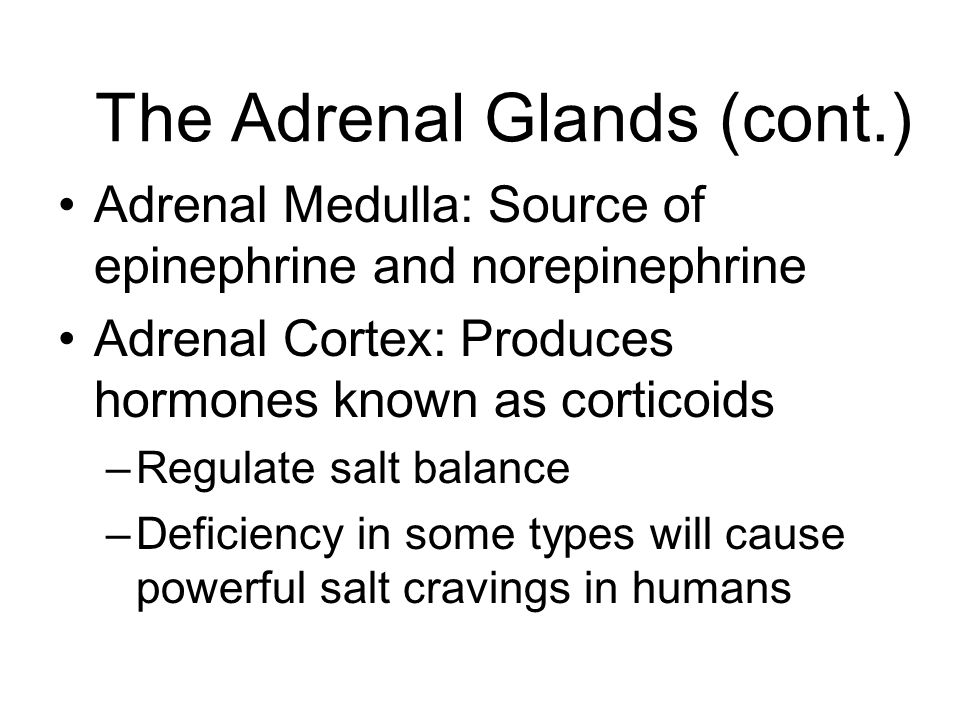 The Adrenal Glands (cont.)