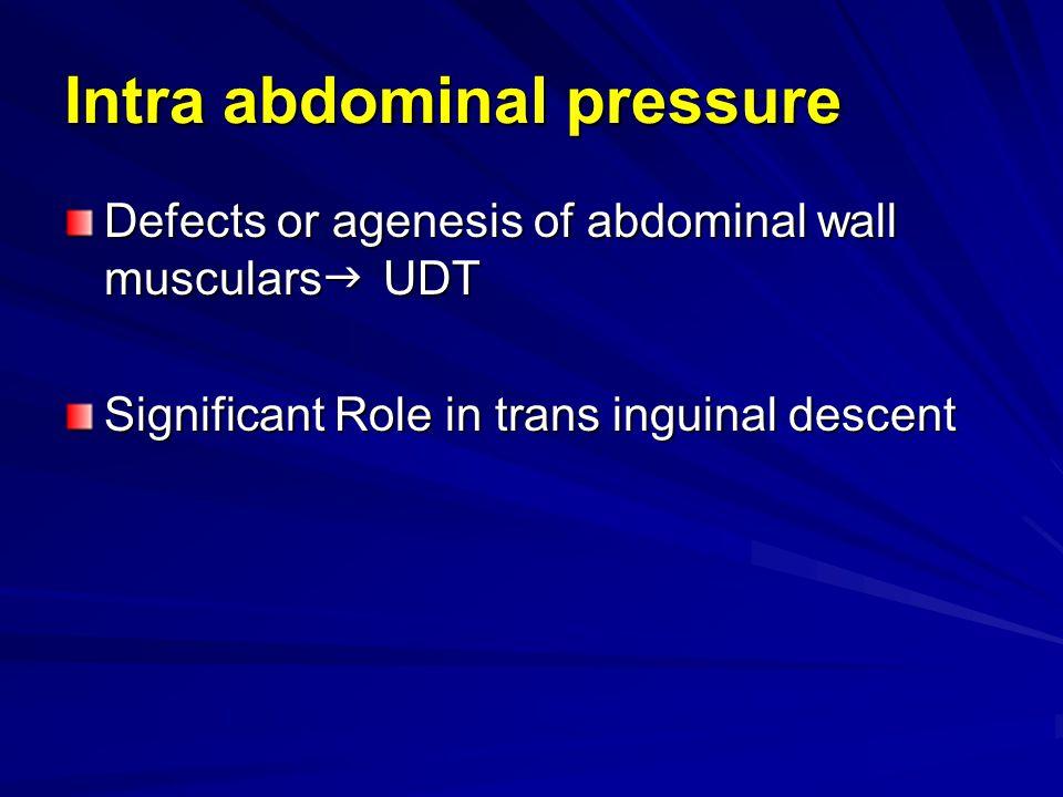 Intra abdominal pressure