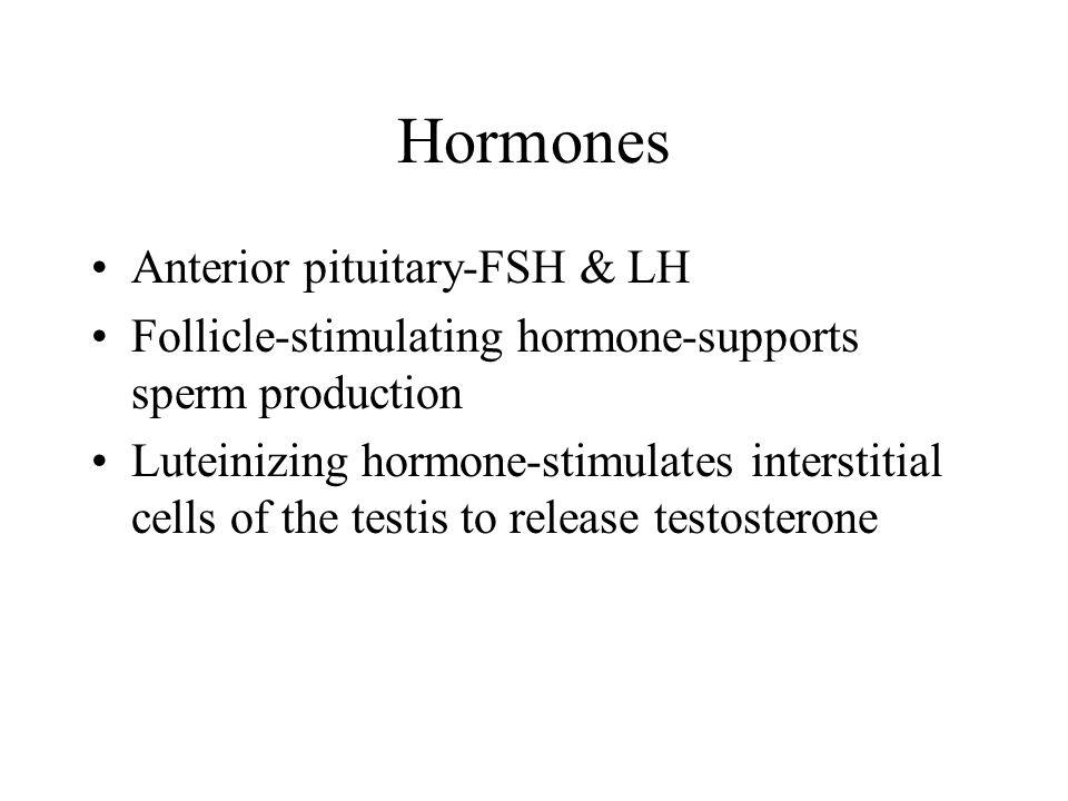 Hormones Anterior pituitary-FSH & LH