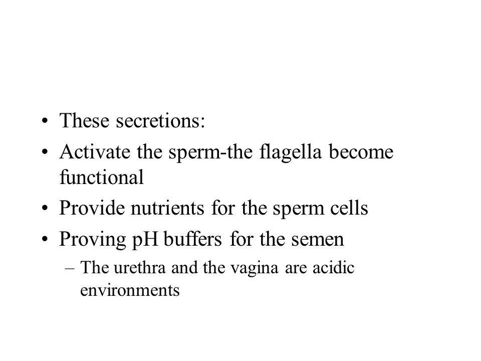 Activate the sperm-the flagella become functional