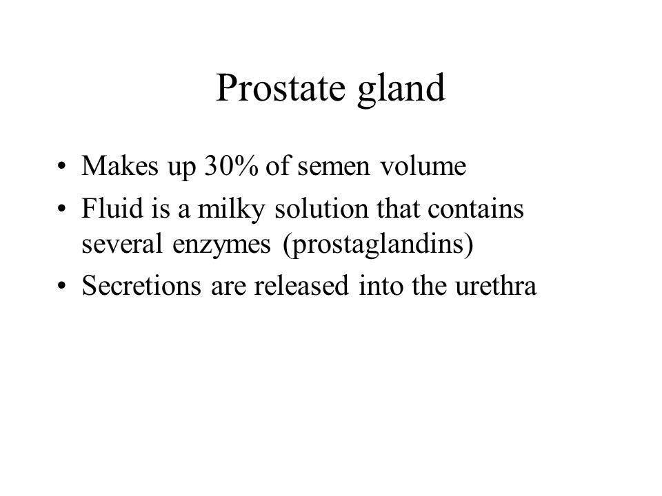 Prostate gland Makes up 30% of semen volume