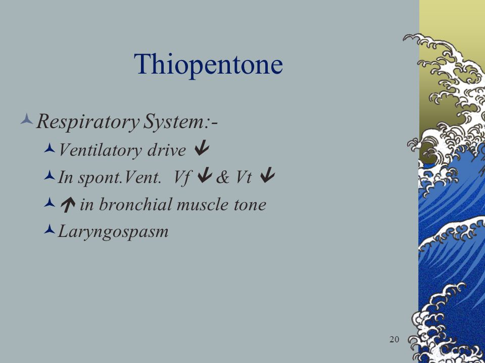 Thiopentone Respiratory System:- Ventilatory drive 