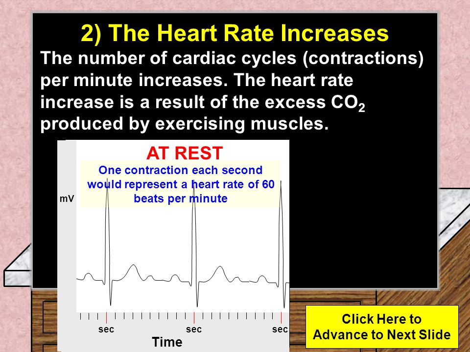 2) The Heart Rate Increases Click Here to Advance to Next Slide
