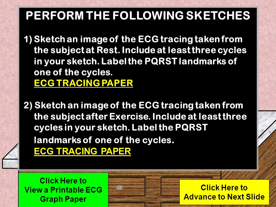 PERFORM THE FOLLOWING SKETCHES