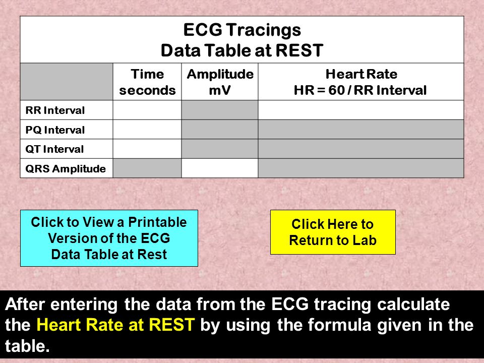 ECG Tracings Data Table at REST