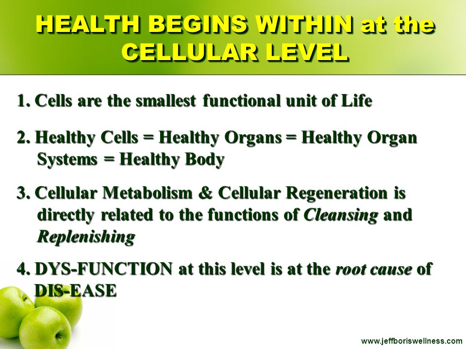 HEALTH BEGINS WITHIN at the CELLULAR LEVEL