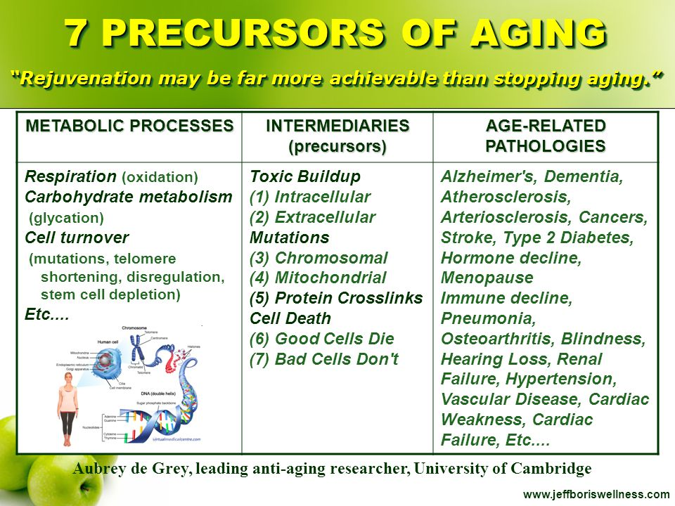 7 PRECURSORS OF AGING Rejuvenation may be far more achievable than stopping aging.