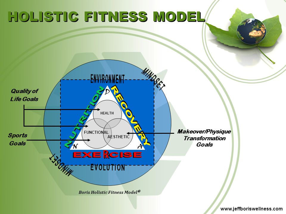 HOLISTIC FITNESS MODEL