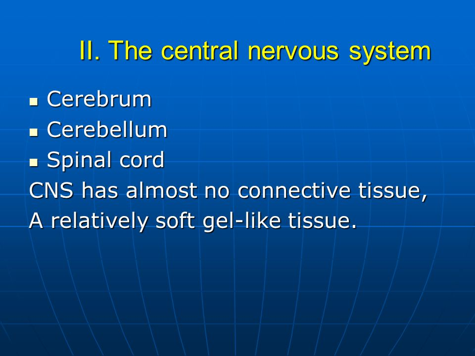 II. The central nervous system
