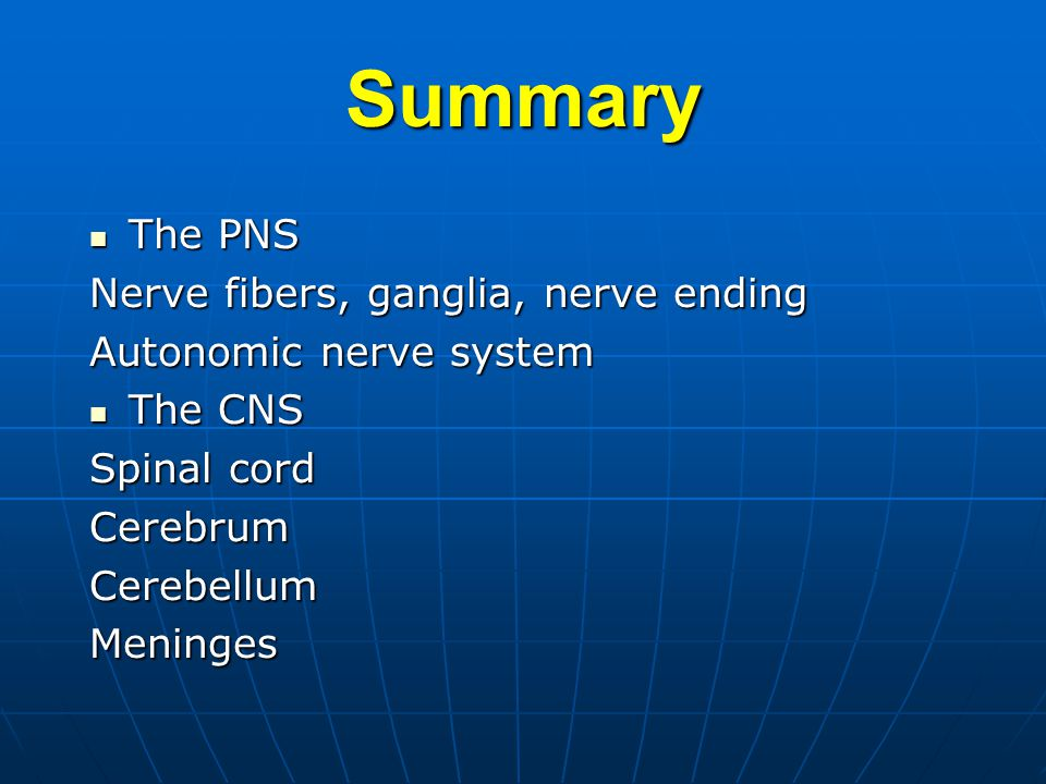 Summary The PNS Nerve fibers, ganglia, nerve ending