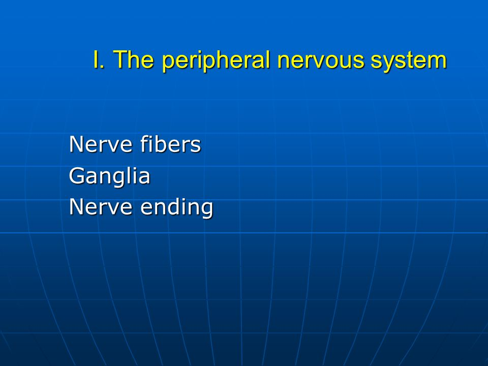 I. The peripheral nervous system