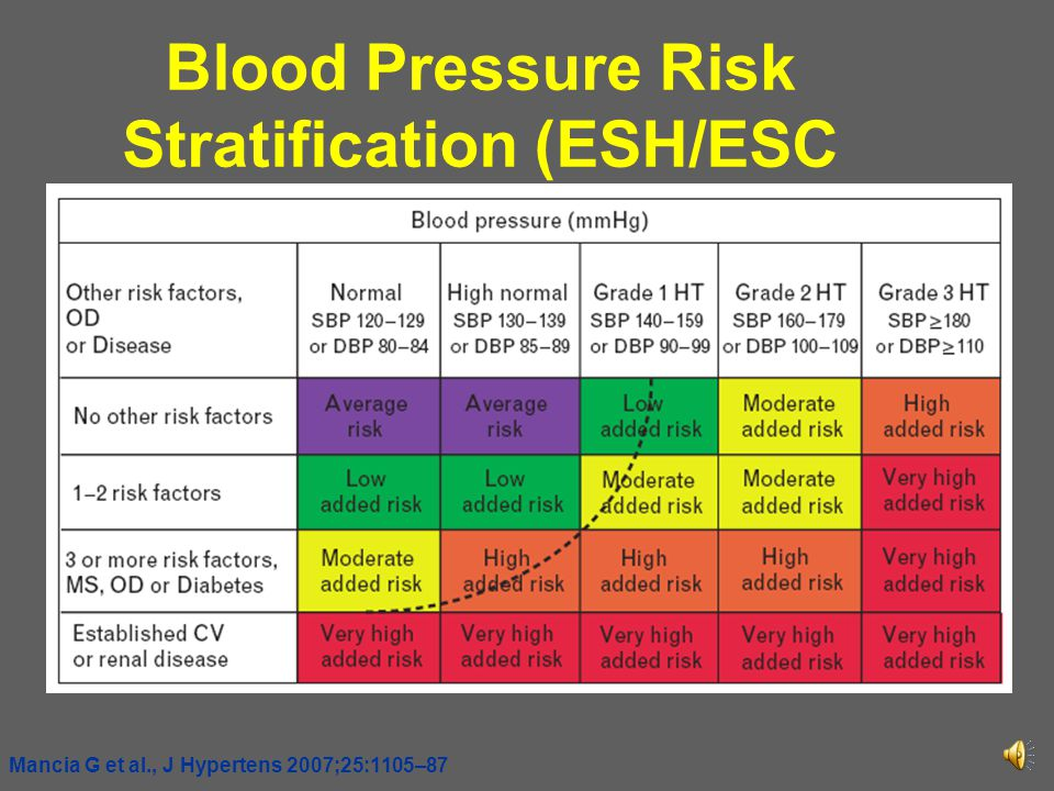 Blood Pressure Risk Stratification (ESH/ESC 2007)