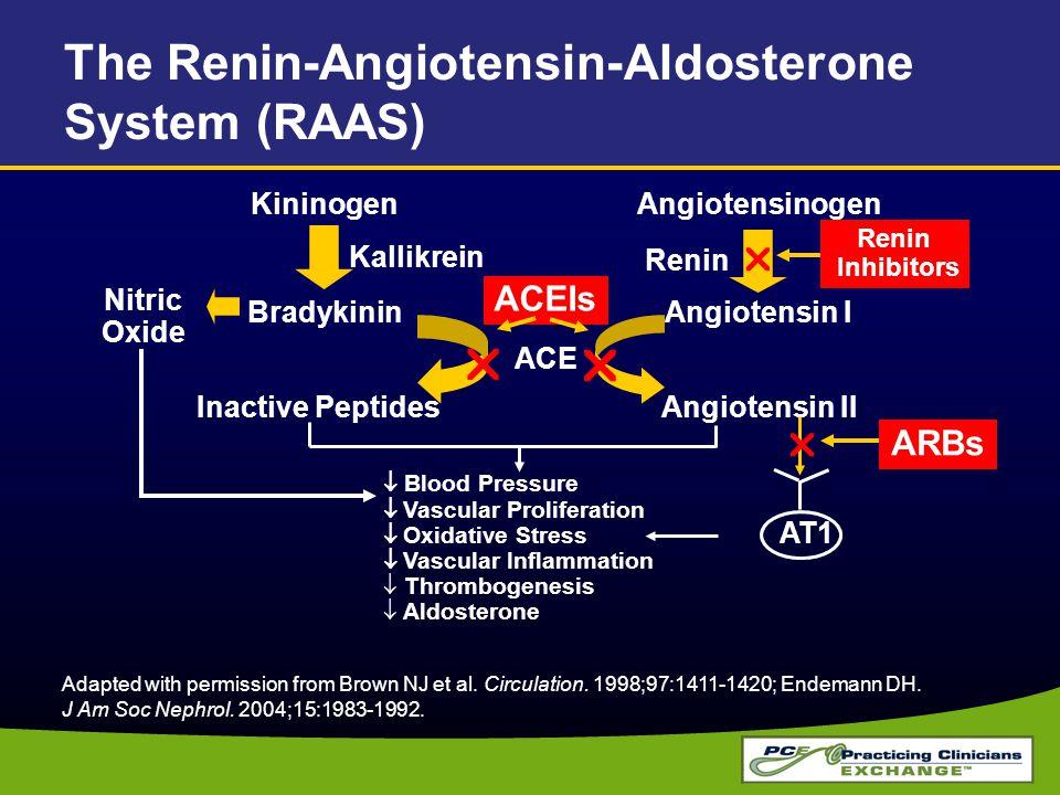 The Renin-Angiotensin-Aldosterone System (RAAS)