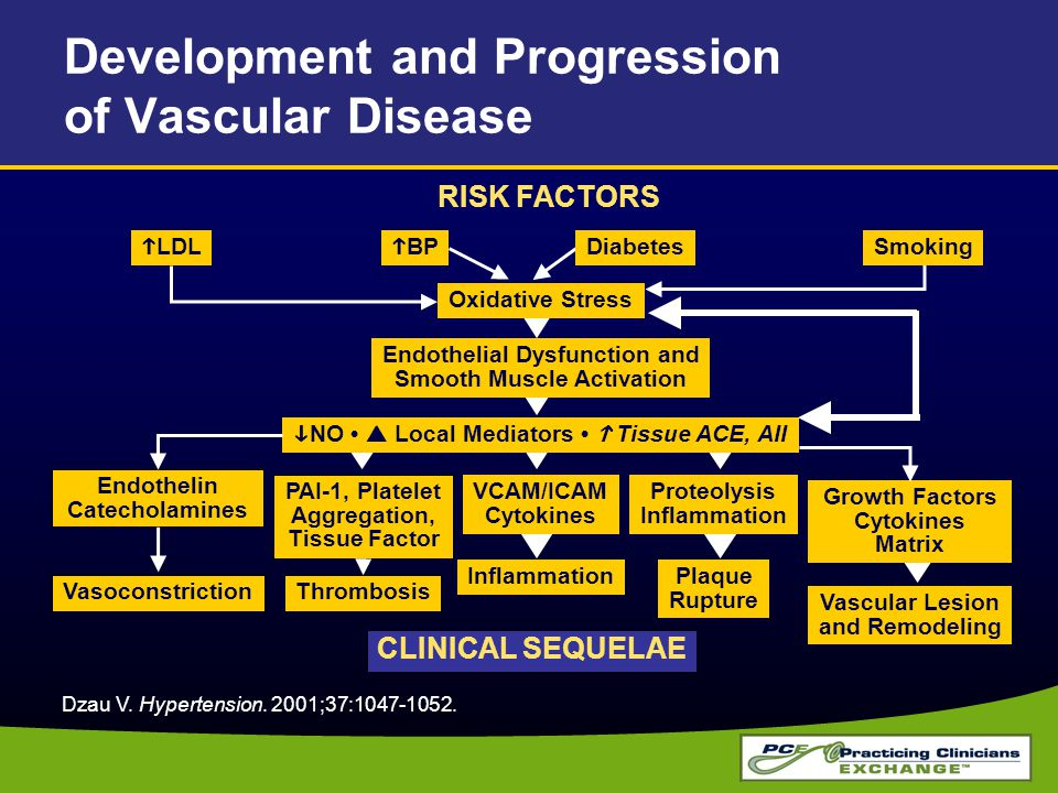 Development and Progression of Vascular Disease