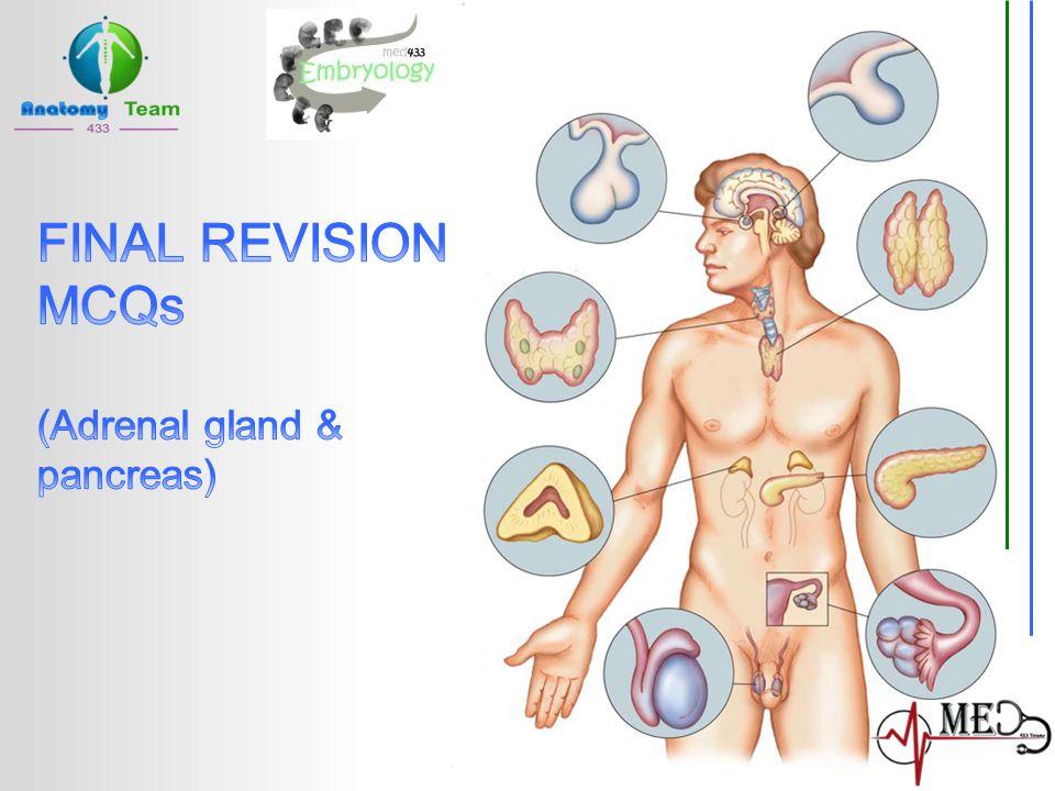 FINAL REVISION MCQs (Adrenal gland & pancreas)