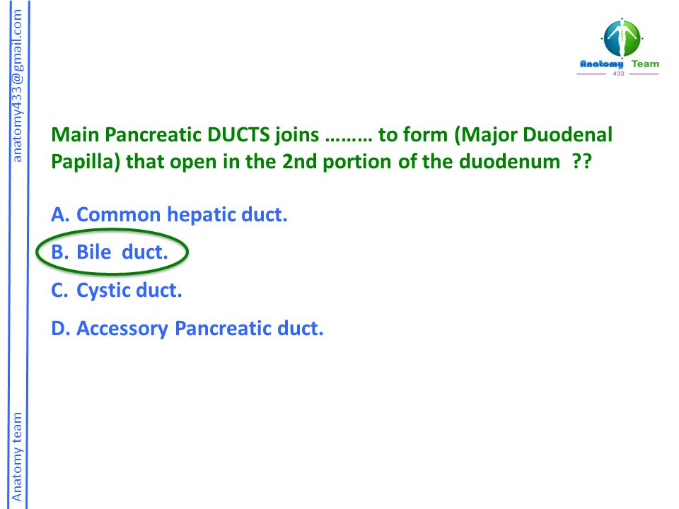Accessory Pancreatic duct.