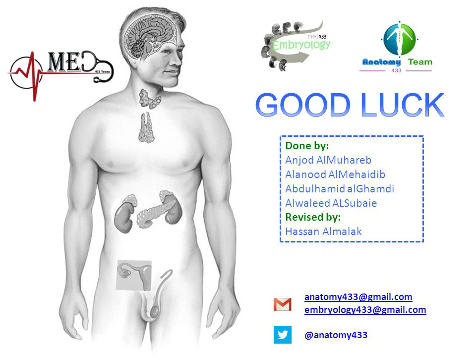 GOOD LUCK Done by: Anjod AlMuhareb Alanood AlMehaidib