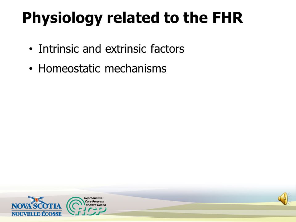 Physiology related to the FHR