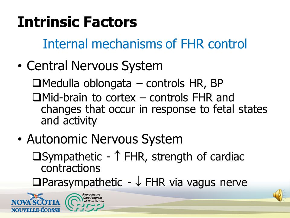 Internal mechanisms of FHR control