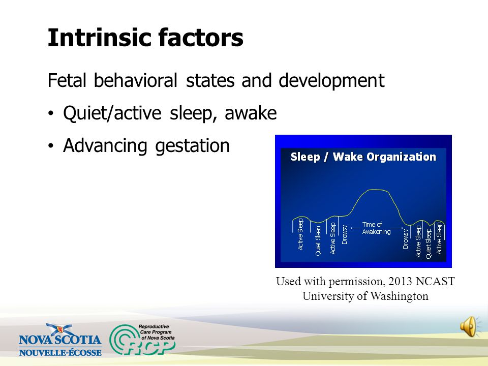 Intrinsic factors Fetal behavioral states and development