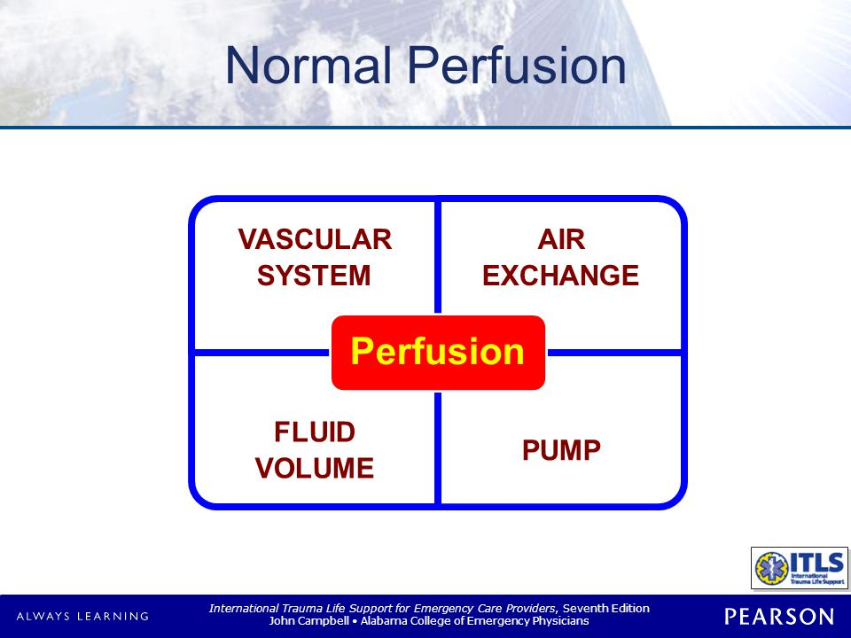 Normal Perfusion Blood Pressure = Cardiac Output x PVR Cardiac Output = Heart Rate x Stroke Volume