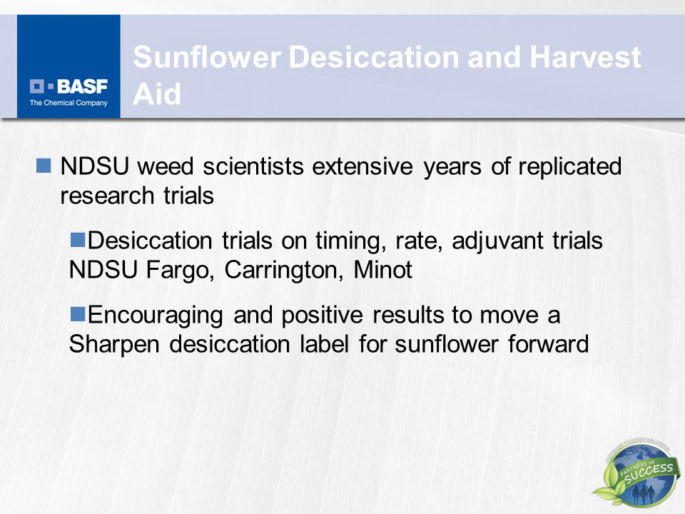 Sunflower Desiccation and Harvest Aid