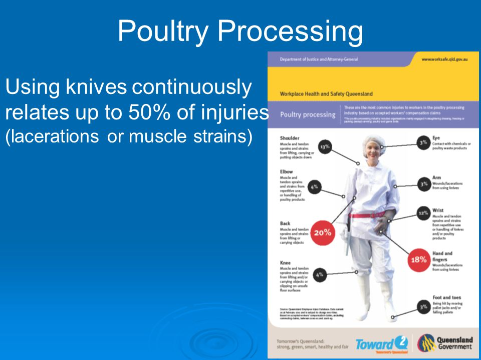 Poultry Processing Using knives continuously