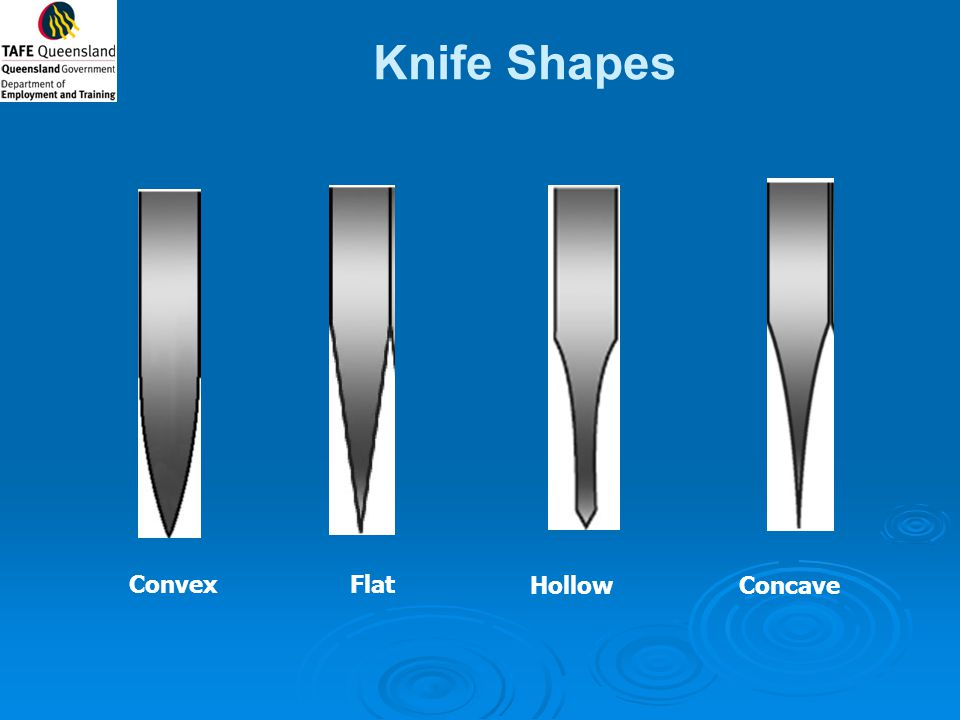 Knife Shapes Convex Flat Hollow Concave