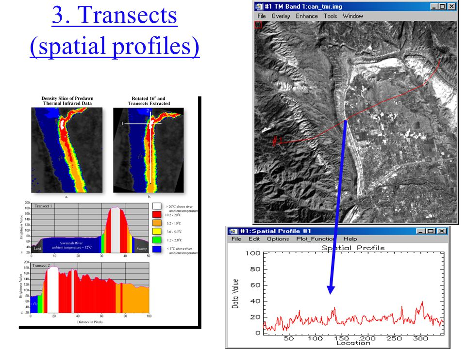 3. Transects (spatial profiles)