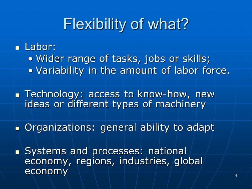 Flexibility of what Labor: Wider range of tasks, jobs or skills;