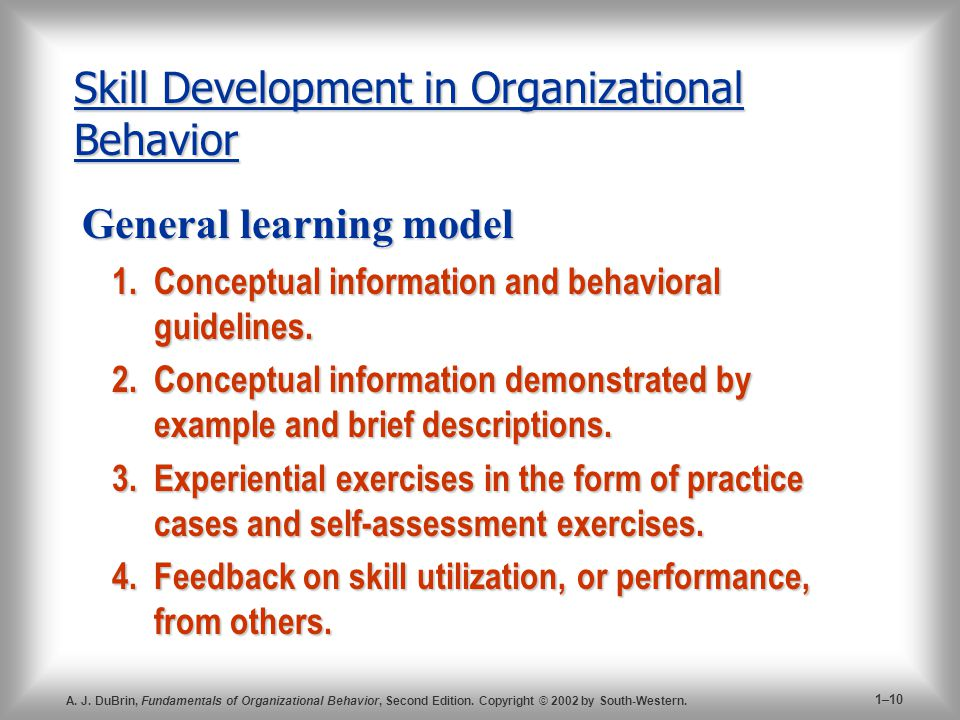 Skill Development in Organizational Behavior