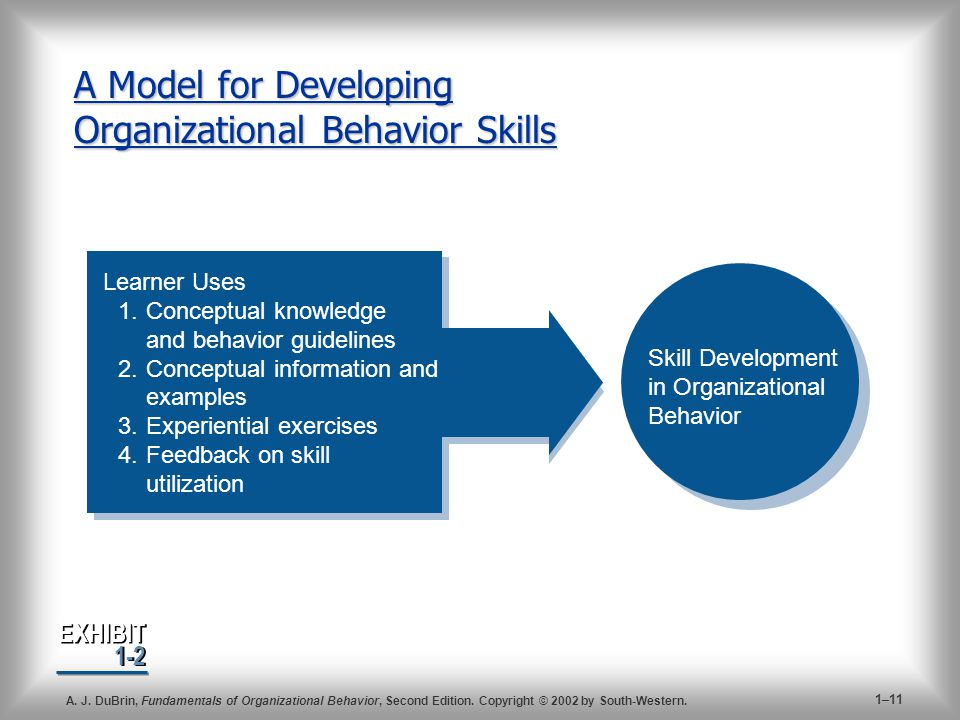 A Model for Developing Organizational Behavior Skills