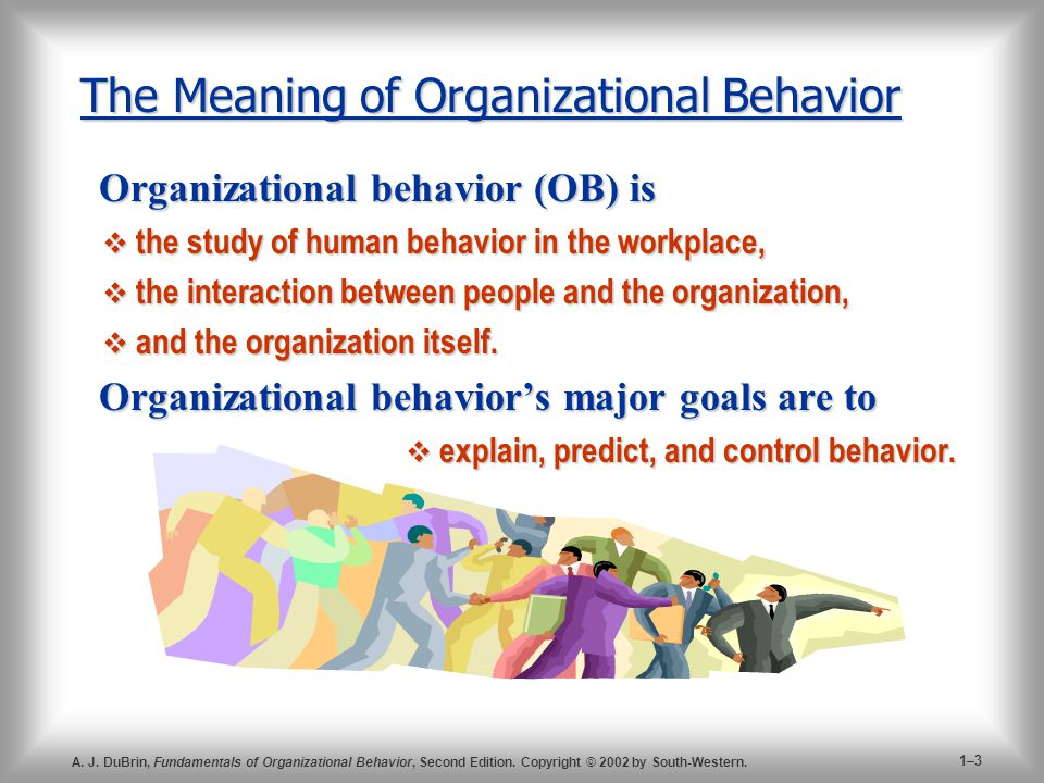 The Meaning of Organizational Behavior