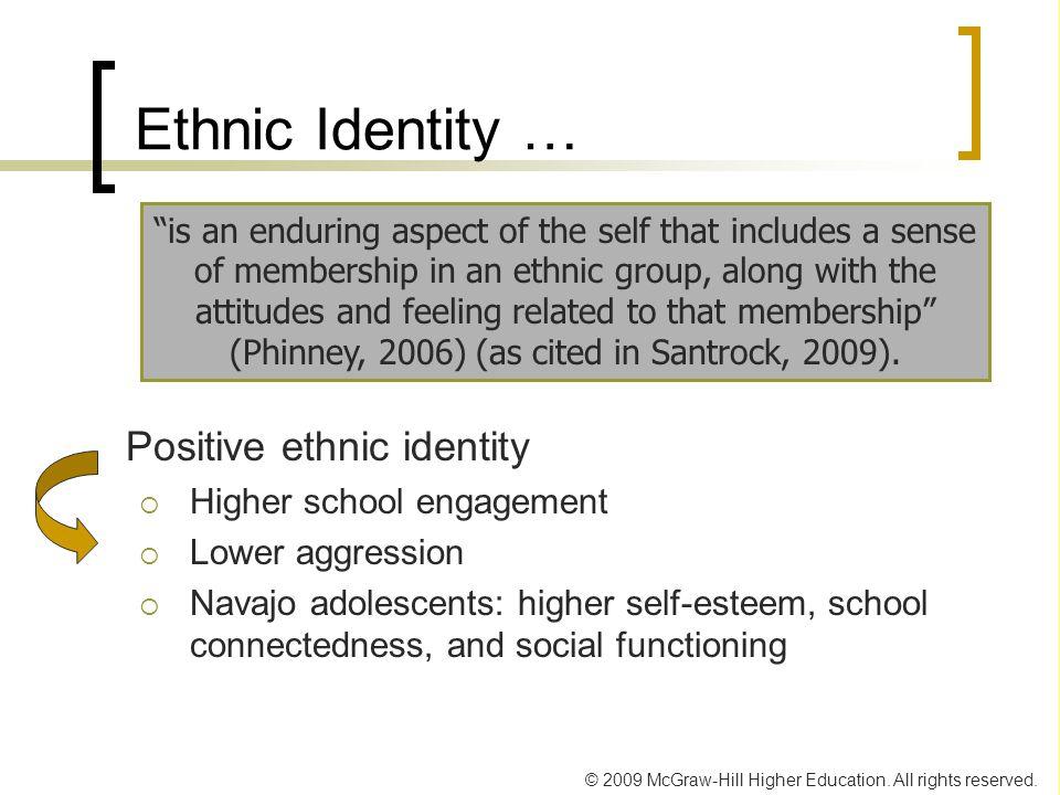 Ethnic Identity … Positive ethnic identity Higher school engagement