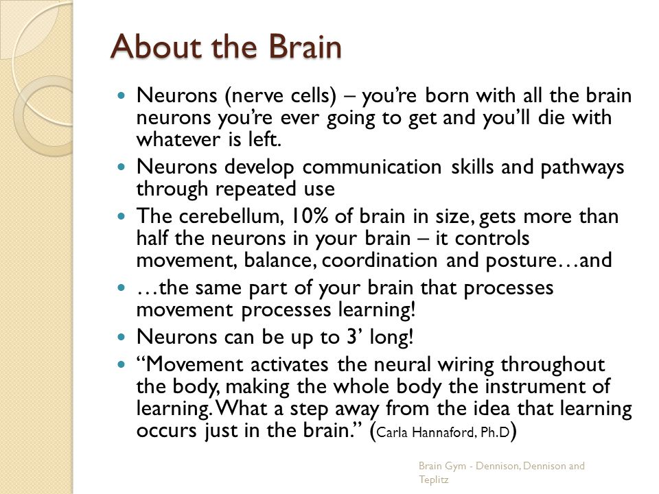 About the Brain Neurons (nerve cells) – you're born with all the brain neurons you're ever going to get and you'll die with whatever is left.