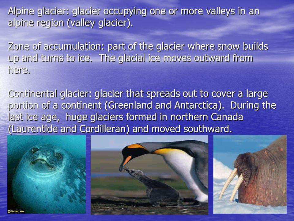 Alpine glacier: glacier occupying one or more valleys in an alpine region (valley glacier).