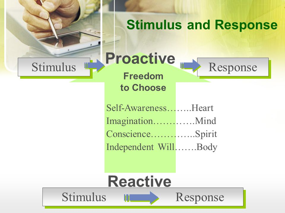Proactive Reactive Stimulus and Response Stimulus Response