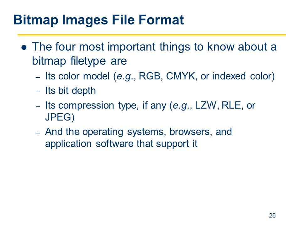 Bitmap Images File Format