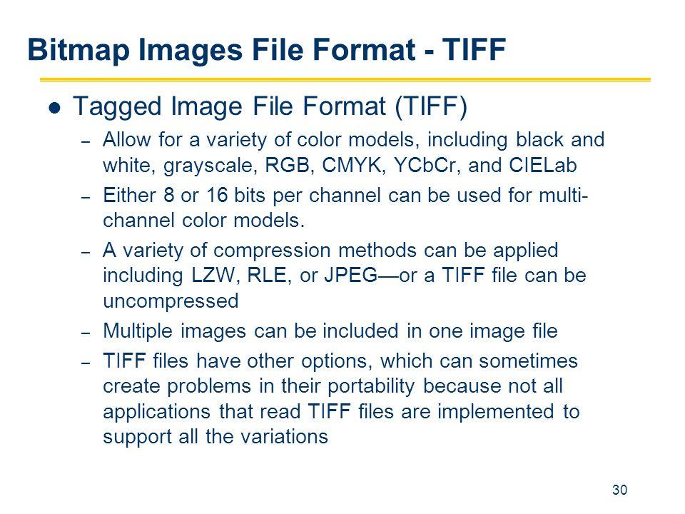 Bitmap Images File Format - TIFF