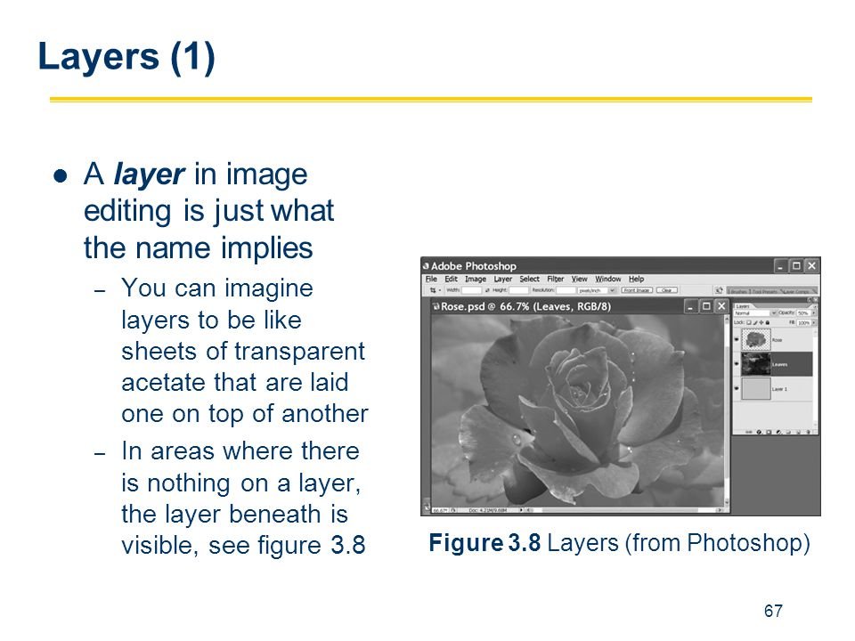 Layers (1) A layer in image editing is just what the name implies