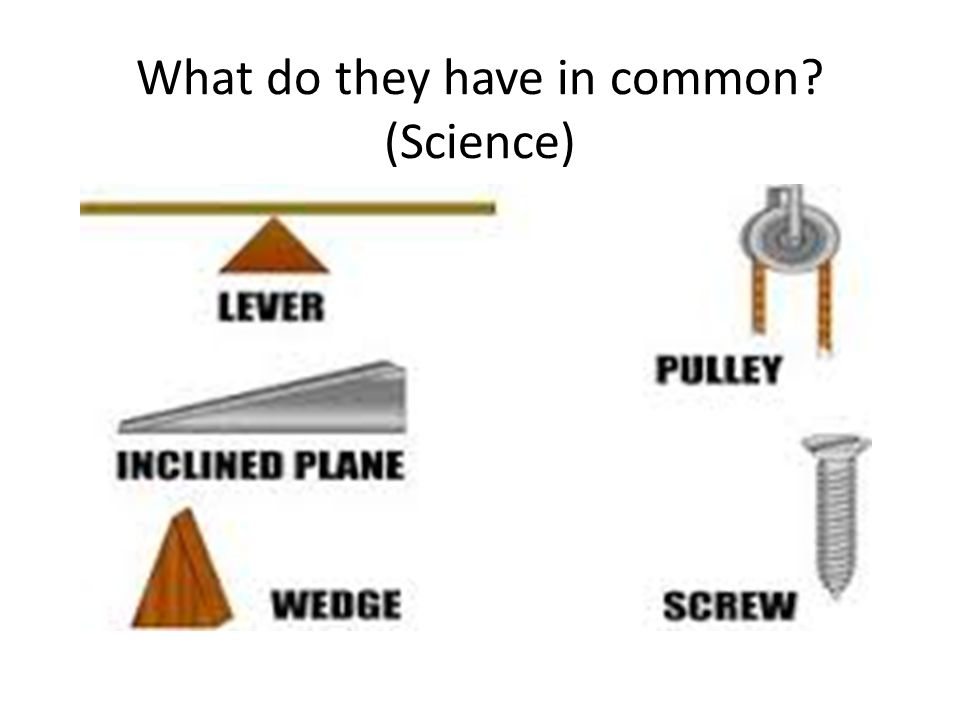 What do they have in common (Science)