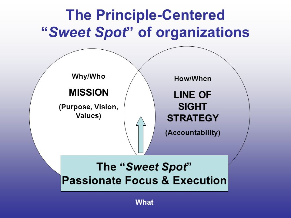 The Principle-Centered Sweet Spot of organizations