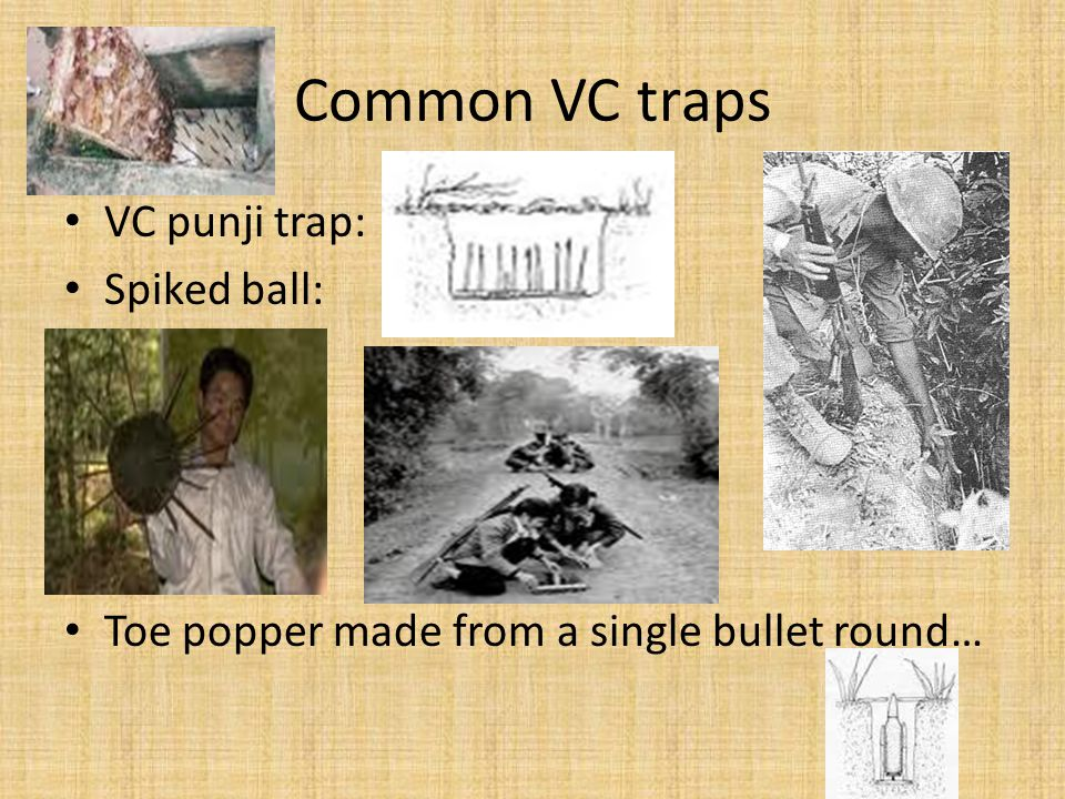 Common VC traps VC punji trap: Spiked ball: