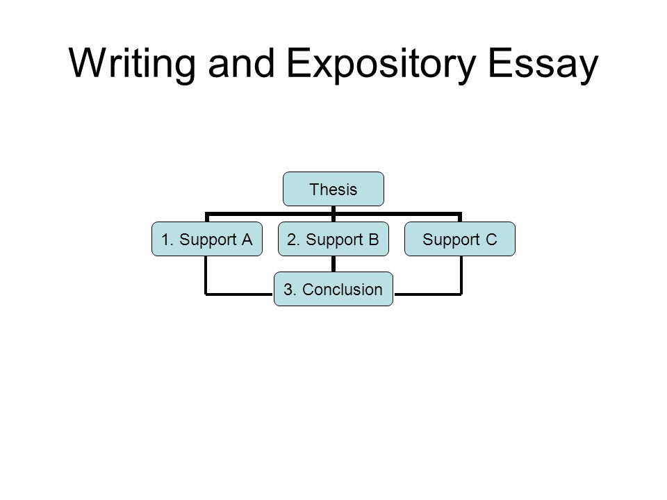 simple rules for organizing an essay that argues a point ppt  2 writing and expository essay