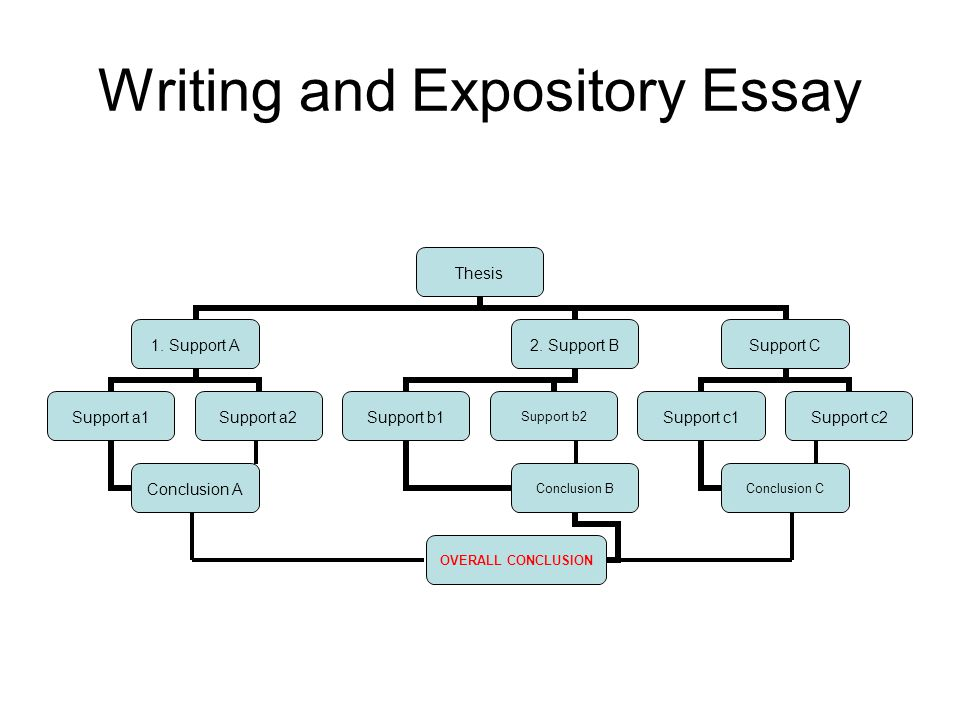 simple rules for organizing an essay that argues a point ppt  3 writing and expository essay