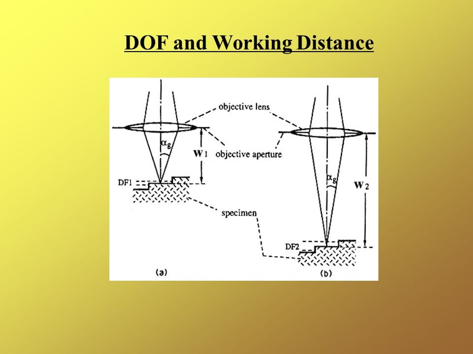 DOF and Working Distance